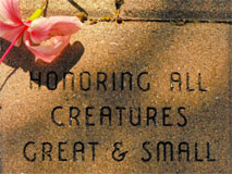 Honoring all Creatures Great & Small